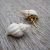 DIY kagyló fülbevaló