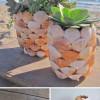 Kreatív kagyló virágcserép
