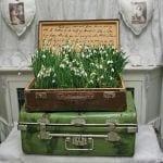 Egy bőröndnyi hóvirág