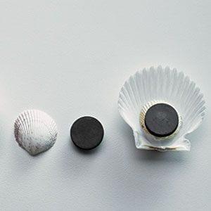 kreativ-otlet-kagylo-hutomagnes