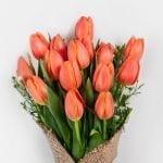 Virágcsokor, tuti befutó